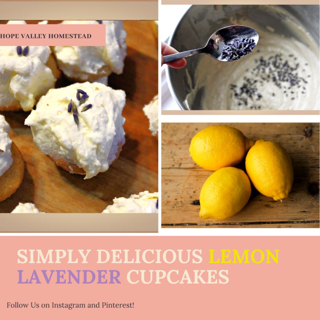 Simply Delicious Lemon Lavender Cupcakes